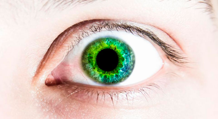 que es eye tracking